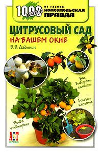 Цитрусовый сад на вашем окне