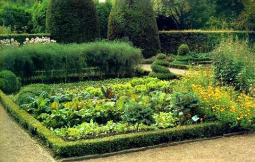 На этом плане изображен огород